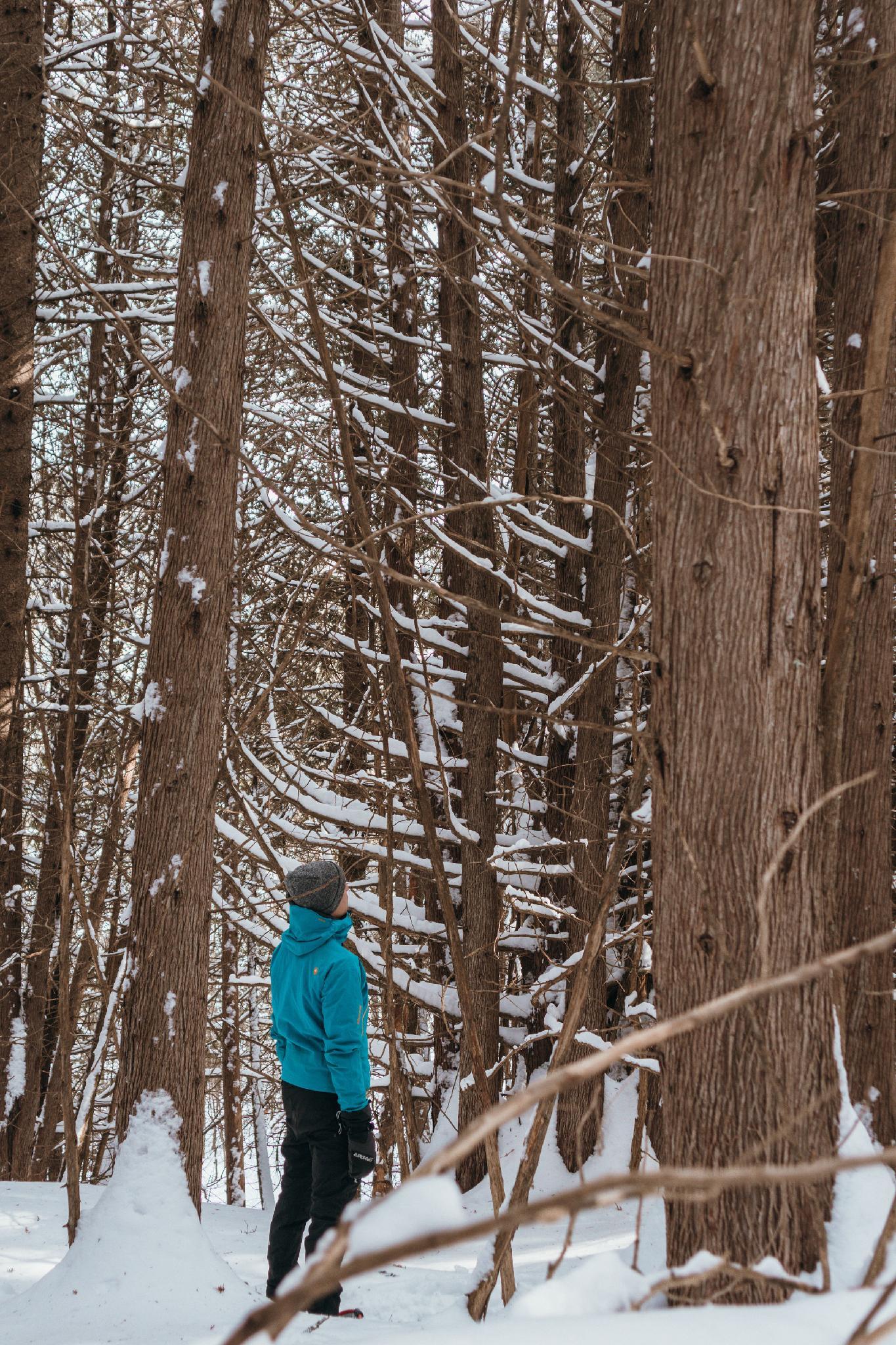 Randonnée hivernale dans les sentiers de HOM