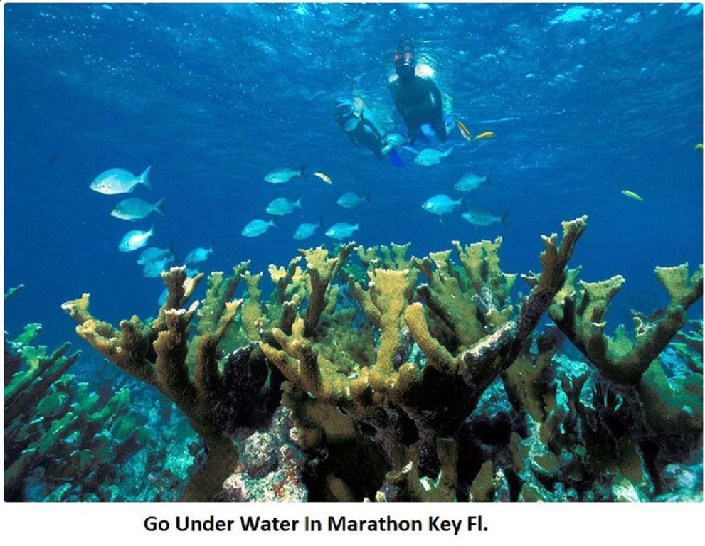 Go Under Water