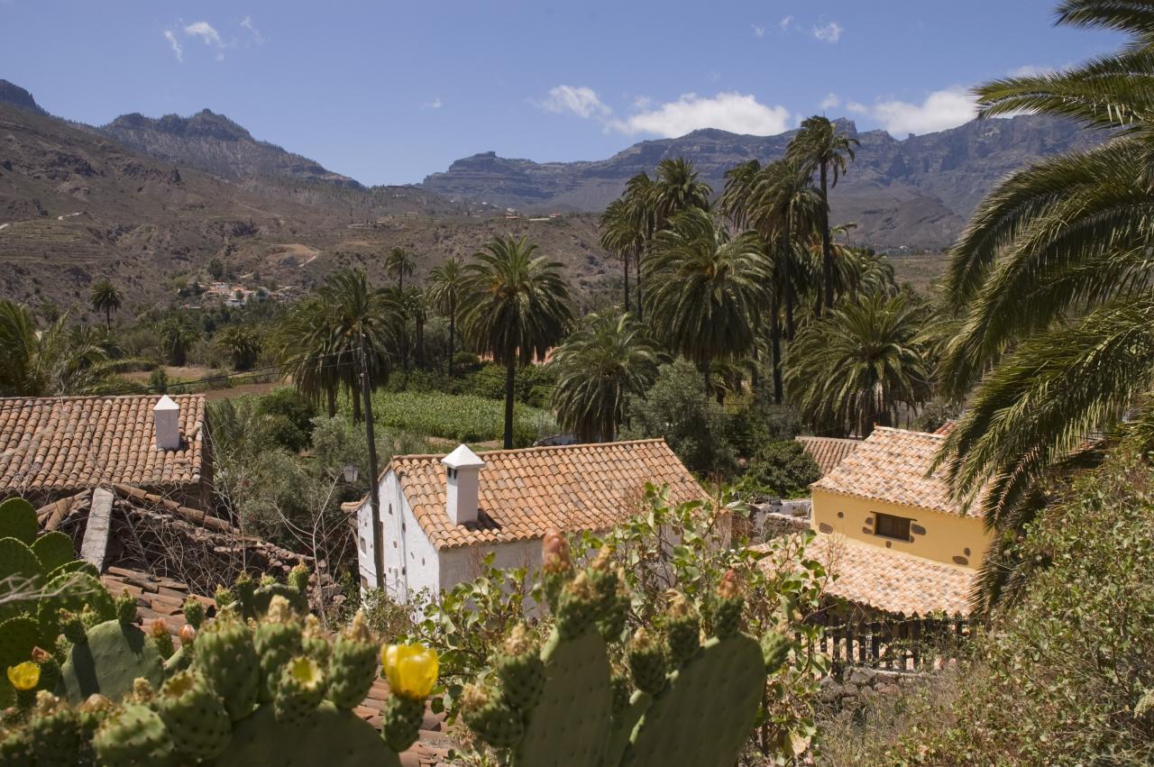 Casita rural con encanto en El Ingenio, Santa Luc?a_240