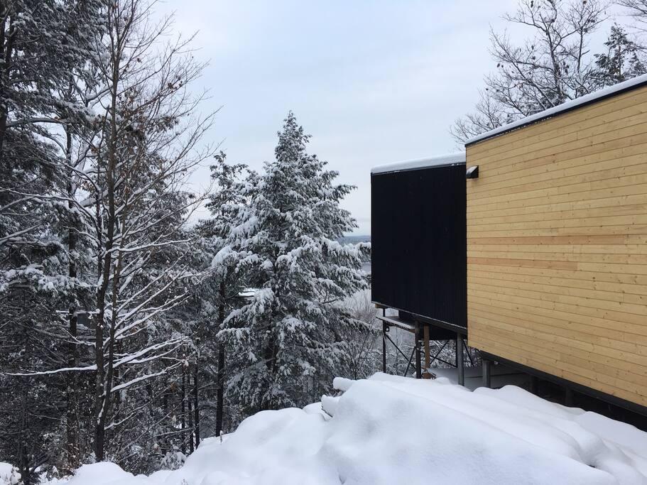 Les beautés de l'hiver