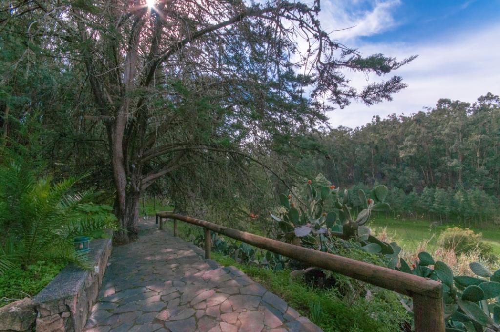 Casa rural con piscina compartida en El Zumacal - Firgas - GRAN CANARIA_0021